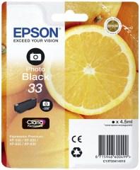 Cartridge do tiskárny Originálna cartridge Epson T3341 (Foto čierna)